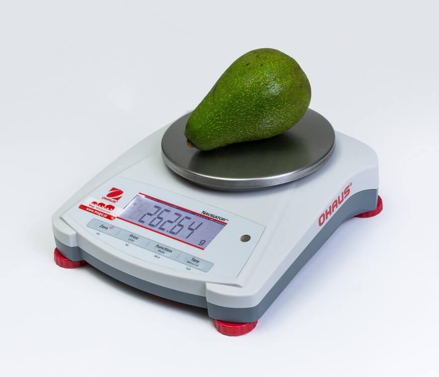 Awokado na wadze