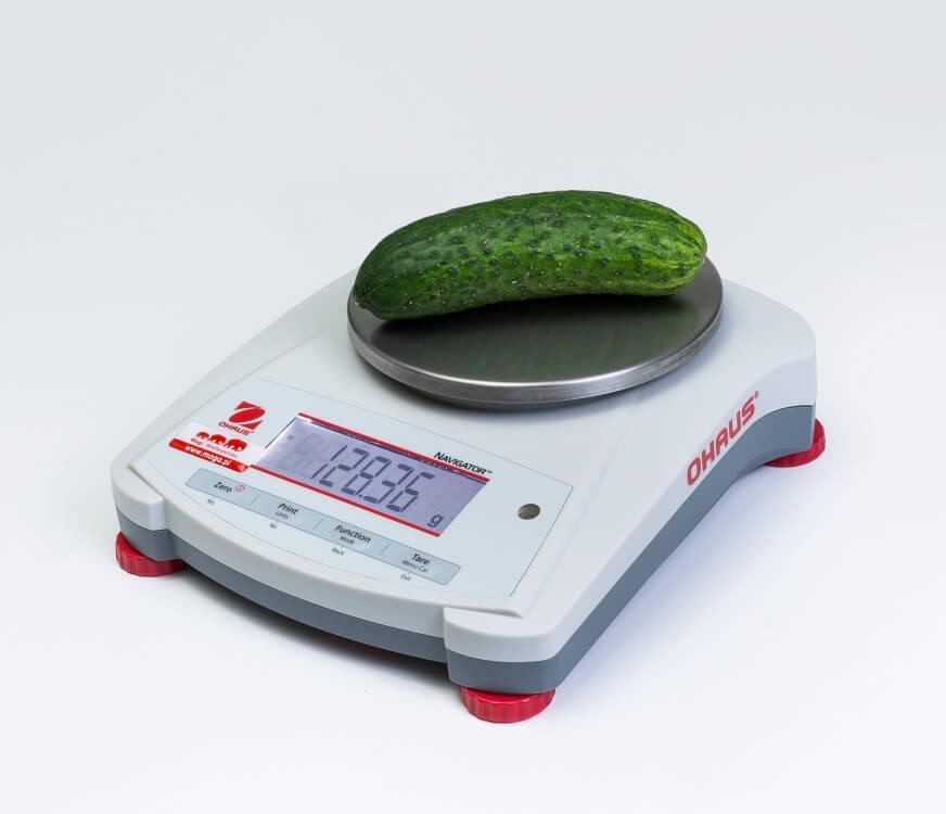 Ogórek śremski na wadze